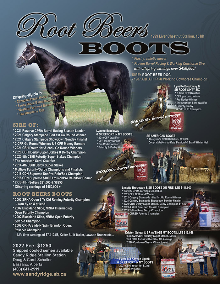 Root Beers Boots by Root Beer Doc - Standing at Sandy Ridge Stallion Station